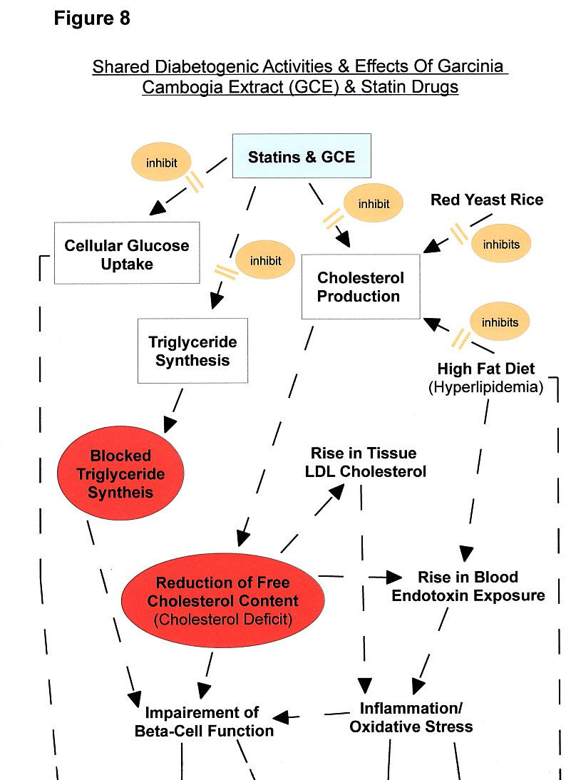 Figure 8a: Statins & Garcinia Cambogia Adverse Effects - Diabetes