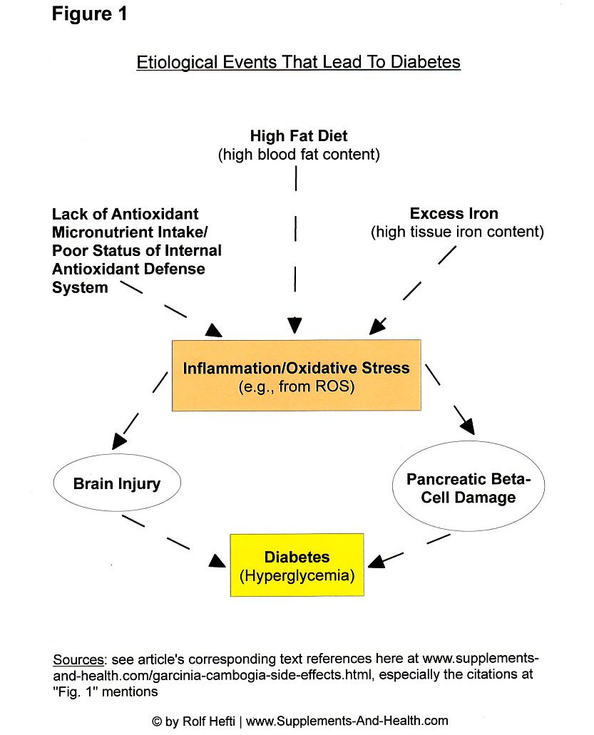 Figure 1: What Causes Diabetes?