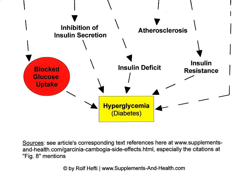 Figure 8b: Statins & Garcinia Cambogia Adverse Effects - Diabetes